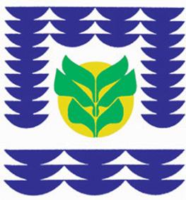 Saint-Laurent-du-Maroni, sèves de Guyane