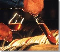 Mieux connaître le cognac.