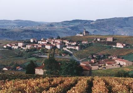 Saint-Laurent-d'Oingt ( 69620 - Rhône )